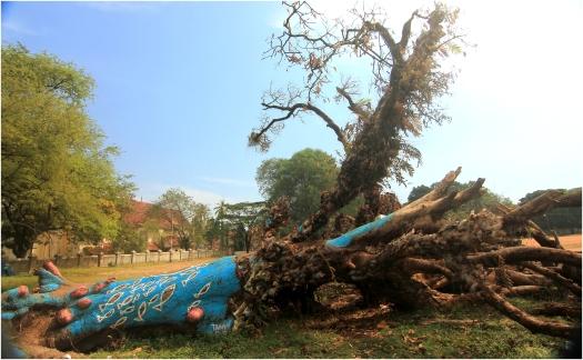 treepainter